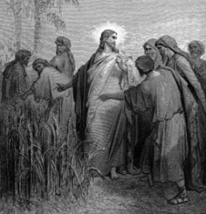 discipoli Isus farizei ziua de Sabat